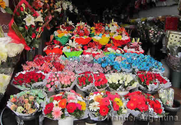 Bunches of colorful flowers at the huge Almagro flower market