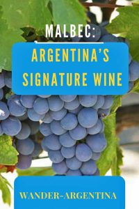 Argentina Malbec, made with grapes from Argentina's Mendoza region is Argentina's most famous red wine