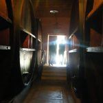 Mendoza — Beautiful Wine City at the Foot of the Andes