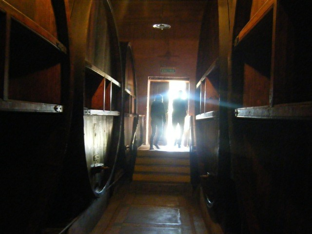 Huge wine barrels in a Mendoza winery near Mendoza city, Argentina