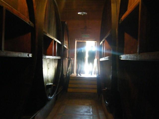Huge wine barrels in a Mendoza winery near Mendoza city, Argentina