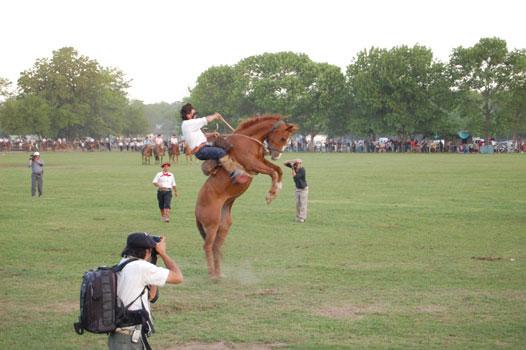 A gaucho rides an angry horse in San ANtonio de Areco, Argentina