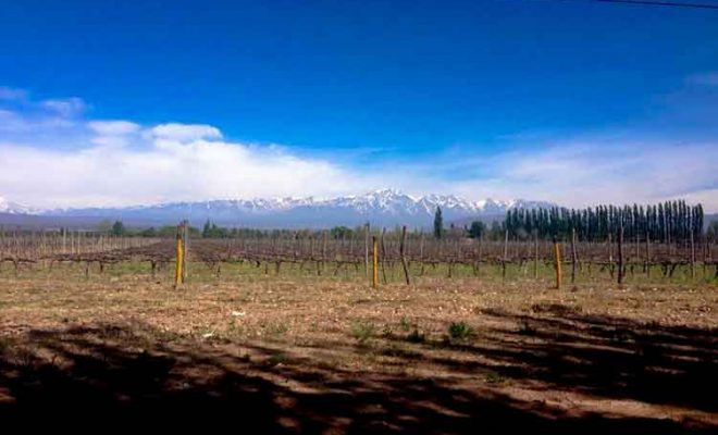 Mendoza: Beautiful Wine City at the Foot of the Andes