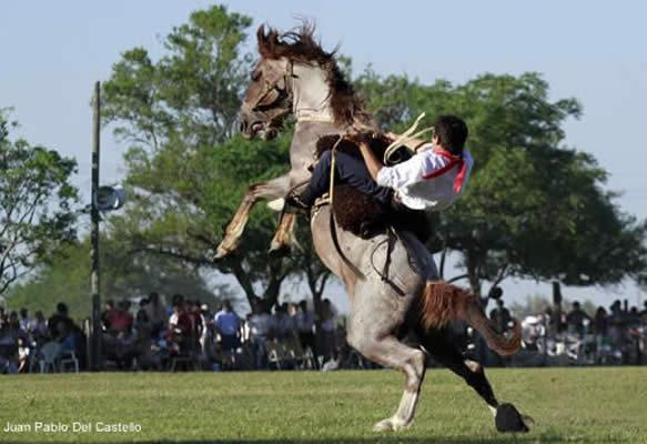 a gaucho rides a bucking horse at the fiesta de la tradicion festival in San Antonio de Areco