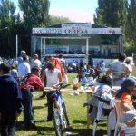 Boho and Berries: El Bolsón Regional Fair