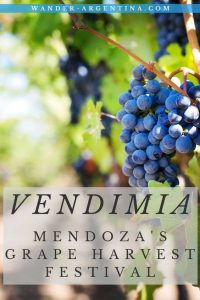 Vendimia: Mendoza Argentina's Grape Harvest Festival