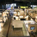 ArteBA: Buenos Aires' Annual Contemporary Art Fair
