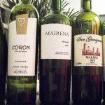 Wine Tasting in Palermo