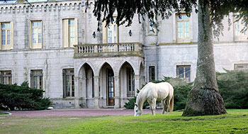 A white horse grazes in front of the castle at the La Candelaria estancia (ranch)