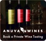 bottles of boutique Argentina wine from Anuva