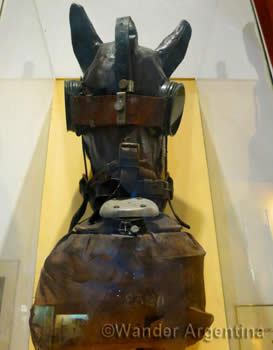 A display of a costume-made horse gasmask from the Argentina Arms Museum