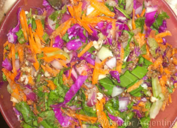 argentine salad arugula purple cabbage and carrot