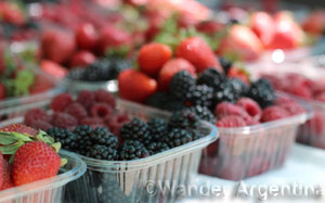 A close up of fresh Patagonia berries at the market