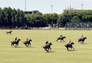 A polo match at Palermo's Campo de Polo