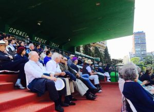 Spectators watch a polo match in Palermo, Buenos Aires