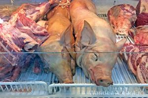 Dead pigs in a butcher's display